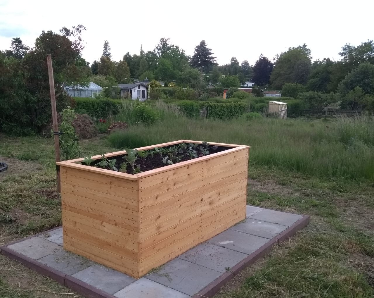 bepflanztes Hochbeet im Mai