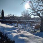 Winter_2021_02